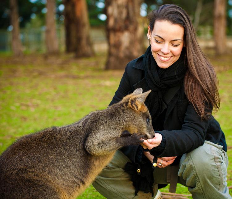 Fényképészként Ausztráliában I. rész- Kengurus kalandok