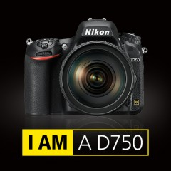Jön a Nikon D780