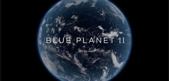Munkaidő végére egy kis lazítás: Blue Planet II